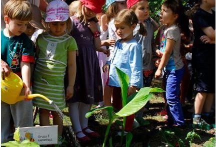 Przedszkolaki z trójki sadzą własne kwiaty na przedszkolnych rabatkach