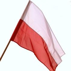 Święto Niepodległości 2016